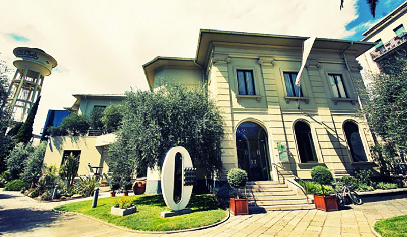 Museo-dell-ulivo---1